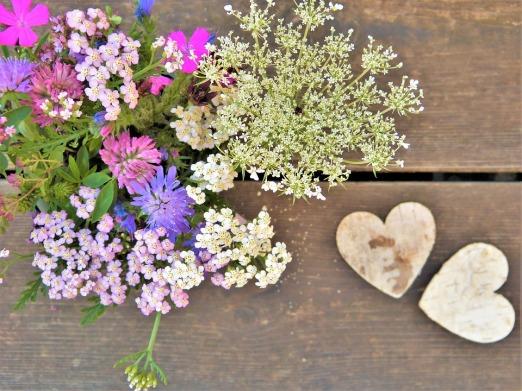 wild-flowers-2538006_960_720